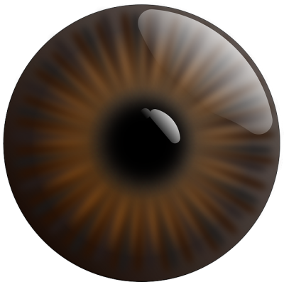 Eye, Realistic, Iris, Brown Transparent PNG Images