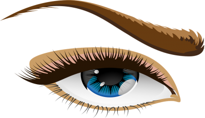 Download Eye And Brow PNG PNG Images