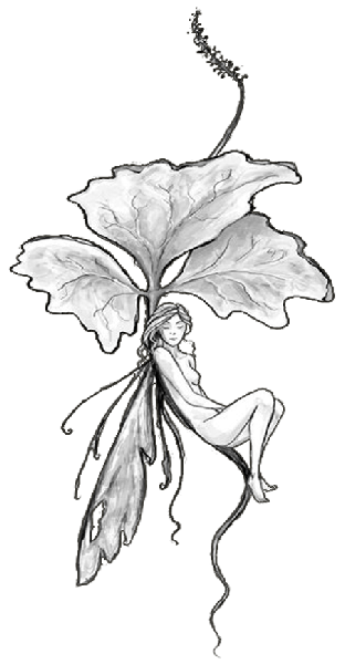 Download Fairy Tattoos PNG PNG Images