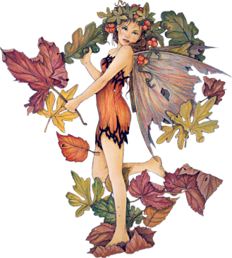 Fairy Transparent Images   PNG Images