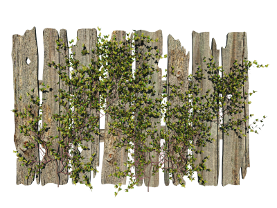 Flowers, Fence, Wood, Misc Plant Png Picture PNG Images