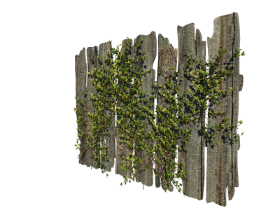 Wood, Trees, Fence Png PNG Images