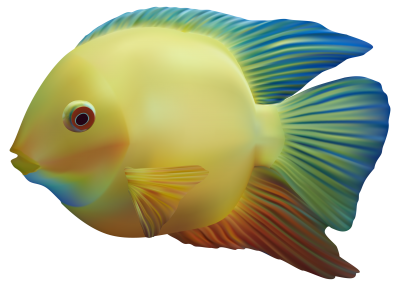 Fish Cut Out PNG Images