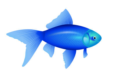 Fish Simple PNG Images