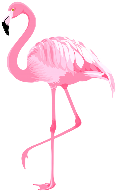 Feathered Pink Flamingo Design Transparent Background PNG Images