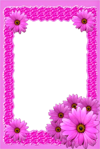 Pink Frame, Pink Flower Frame, Love, Marriage, Memories, Picture Frame