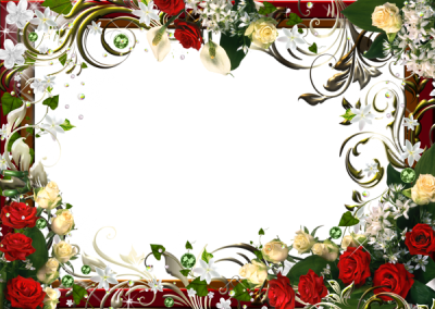 Transparent Flowers Png Frame Gallery Yopriceville PNG Images