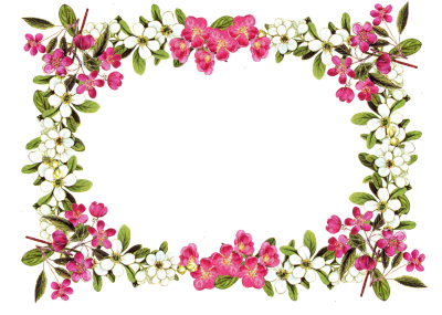 Vintage Flower Frame Clipart, White And Pink Flower With Green Leaf Borders