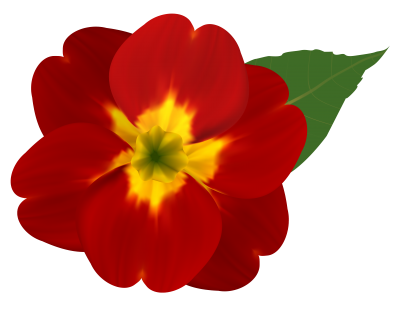 Flower Png Image PNG Images