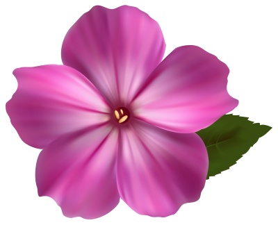 Flower Png Image Pink Clipart PNG Images