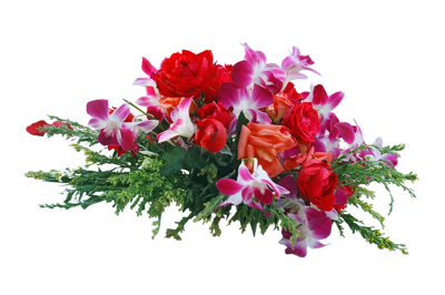 Frame Flowers Png PNG Images
