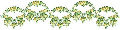Artist Paper Flowers Borders Png PNG Images