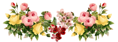 Flower Designs Border Png