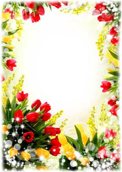 Flower Frame Png With Transparent Pictures PNG Images