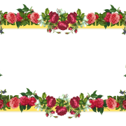 Flowers Borders Png Image PNG Images
