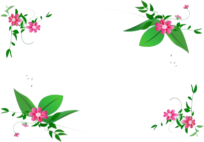 Flowers Borders Png Images   PNG Images