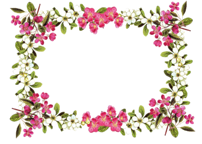 Flowers Borders Png Transparent Photo
