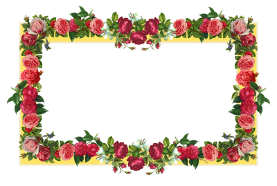Rose Flower Borders Png Clipart