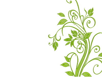 Floral, Flower, Leaf, Leafy, Leaves, Flower Vector Png