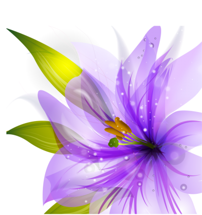 Flower Purple Vector Hq Png