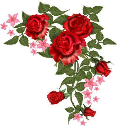 Flowers Vector Rosa Png