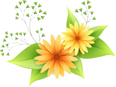 Flowers Vectors Png Transparent Pictures