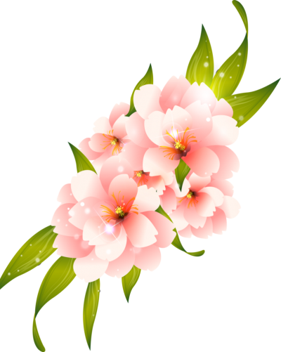 Pink And Whire Flower Vector Hq Png
