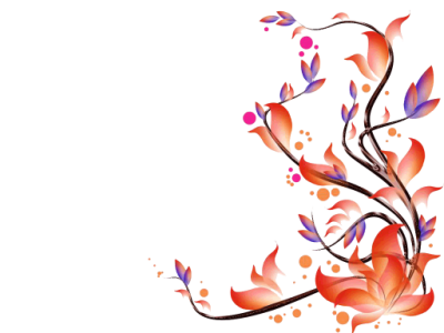 Transparent Flowers Vectors Png Images