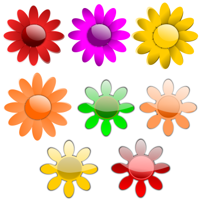 Vector Flowers Colorful Picture PNG Images