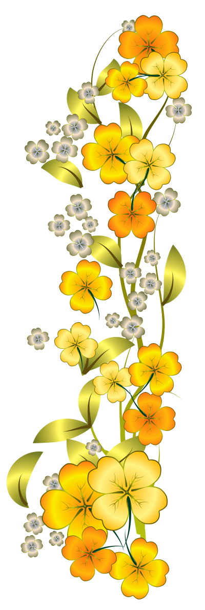 Flowers HD Photo Png