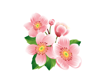 Flowers Best Png PNG Images