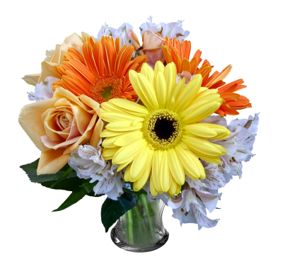Flowers Free Download Transparent