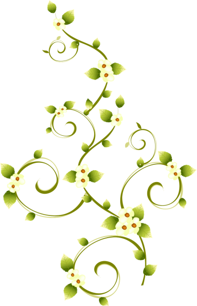 Flowers Transparent PNG Images