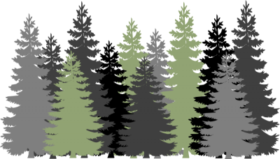 Forest Free Cut Out PNG Images