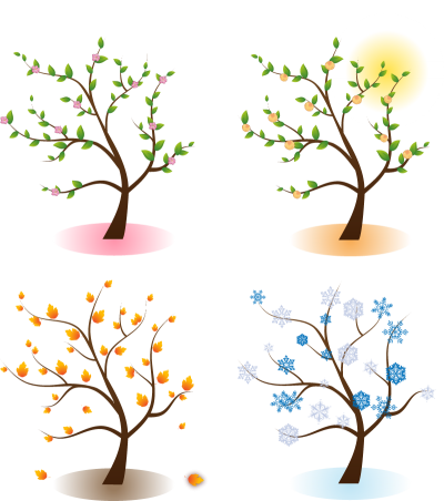 Four Season Trees Png PNG Images