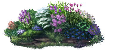 Garden Different Plants Transparent Png PNG Images