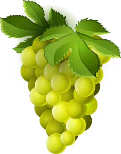 Fruit Grape Clipart Green Photos