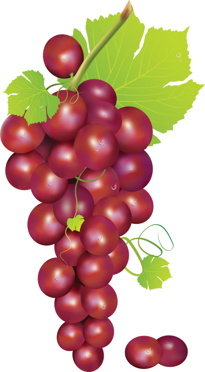 Wonderful Grape Picture Image