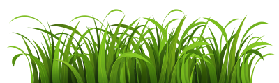Green Grass Drawing Clipart, Sky, Pasture, Shepherd PNG Images