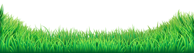 Wide Angle Photograph Of Green Grass HD, Polyana, Nature PNG Images