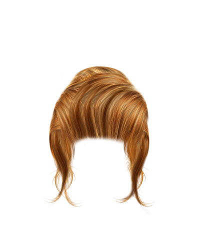 Transparent  Caramel Color Bulk Hair, Bun Styles