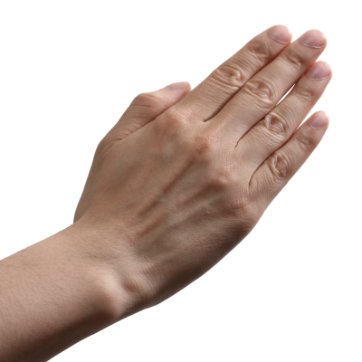 Transparent Image Hand PNG Images