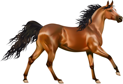 Running Horse Picture Clipart PNG Images