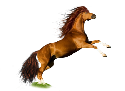 Horse Icon Clipart PNG PNG Images