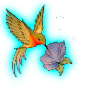 File Clipart PNG Hummingbird Tattoos PNG Images
