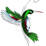 Hummingbird Tattoos Free Download PNG Images