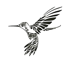 Photo HD Png Hummingbird Tattoos PNG Images