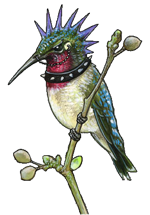 Simple Hummingbird Tattoos PNG Images