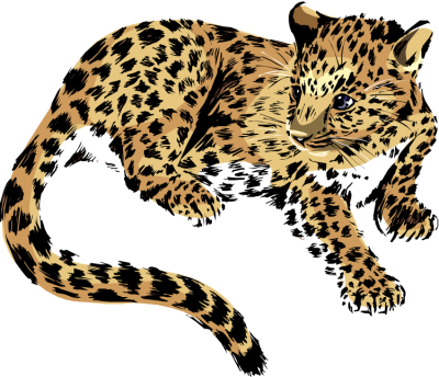 Jaguar Simple PNG Images