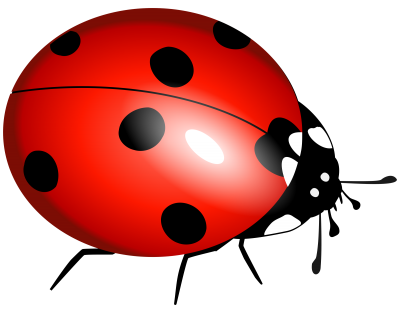 Ladybug Clipart File PNG Images
